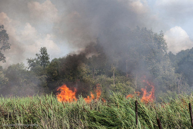 large brush fire in Ling Grove IL 7-4-12