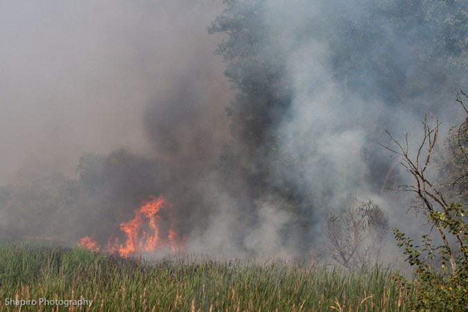 large brush fire in Long Grove 7-4-12